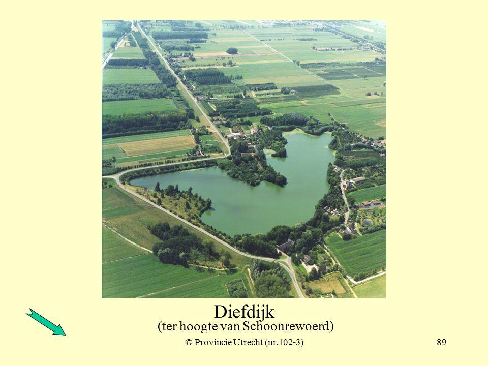 © Provincie Utrecht (nr.101-12)88 Diefdijk (ter hoogte van Schoonrewoerd)
