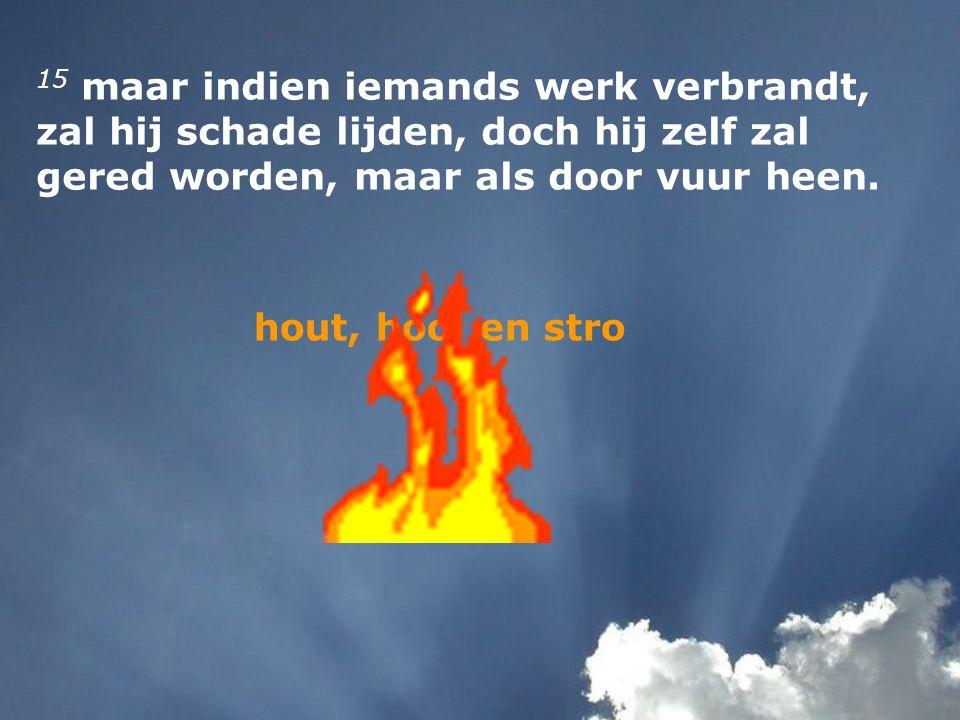 15 maar indien iemands werk verbrandt, zal hij schade lijden, doch hij zelf zal gered worden, maar als door vuur heen. hout, hooi en stro