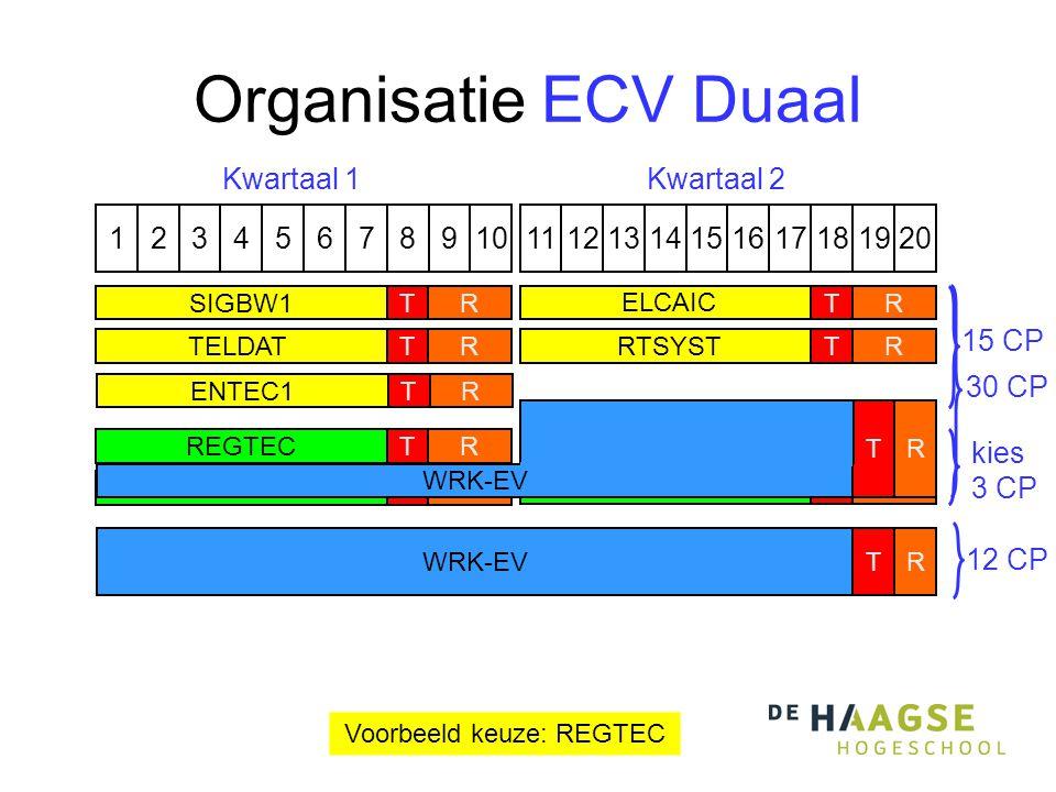 Organisatie ECV Duaal 1324576891110121315141617191820 Kwartaal 1Kwartaal 2 RREGTECT ALGODSTR RENTEC2TRSIGBW2T kies 3 CP Voorbeeld keuze: REGTEC TELDATTRRTSYSTTR SIGBW1TR ELCAIC TR ENTEC1TR 15 CP WRK-EVRT 30 CP 12 CP WRK-EV RT