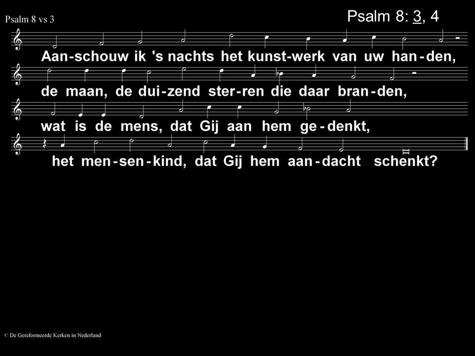 Psalm 8: 3, 4