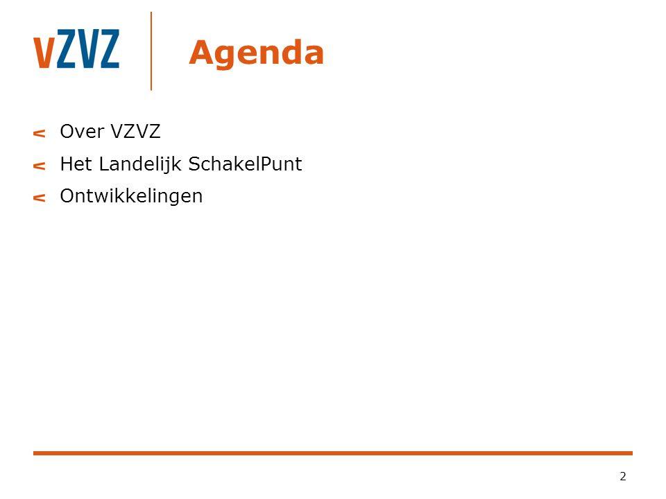 Agenda 2 Over VZVZ Het Landelijk SchakelPunt Ontwikkelingen
