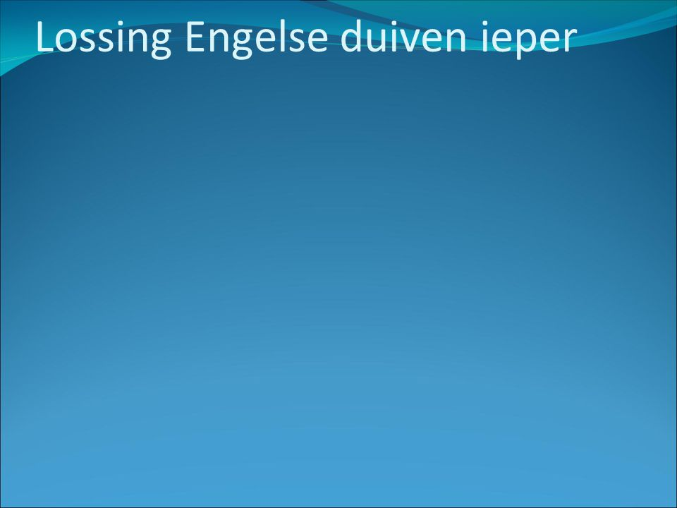 Lossing Engelse duiven ieper