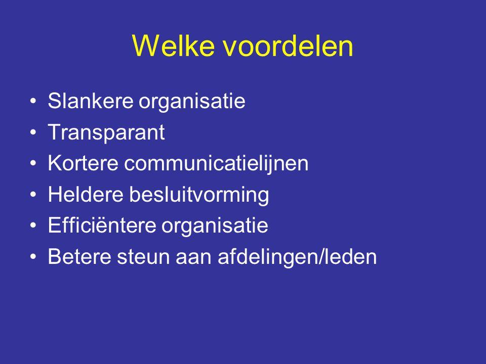 Welke voordelen Slankere organisatie Transparant Kortere communicatielijnen Heldere besluitvorming Efficiëntere organisatie Betere steun aan afdelinge