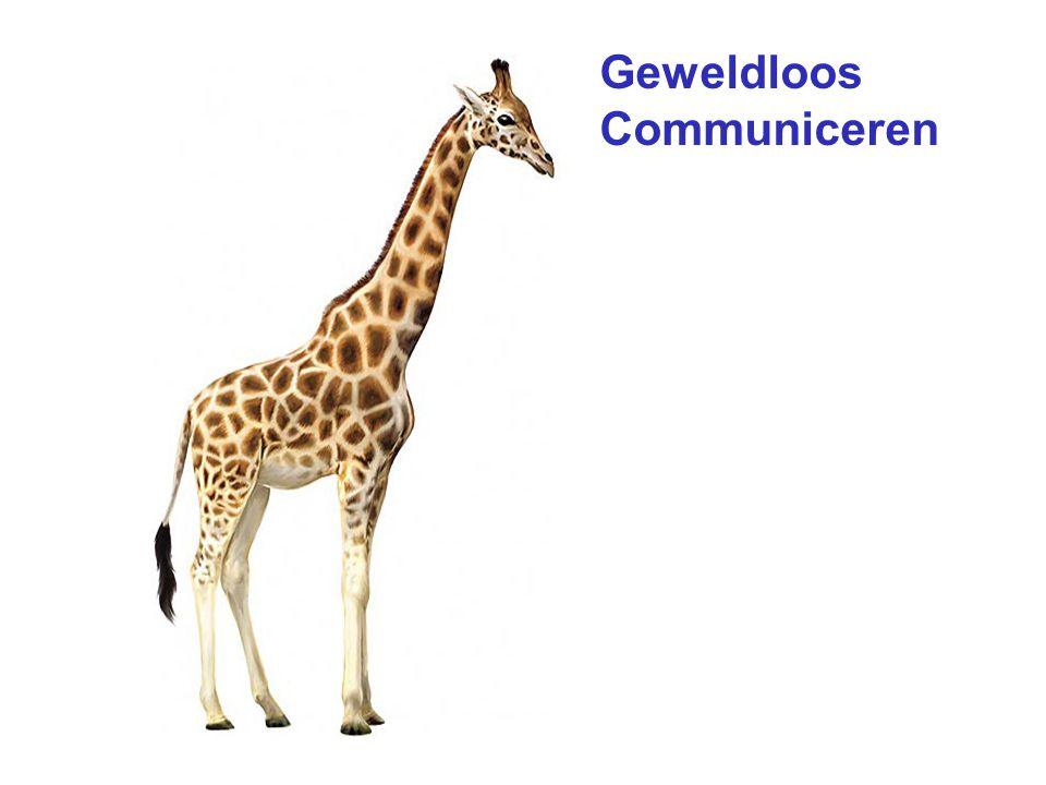 Gewelddadig Communiceren