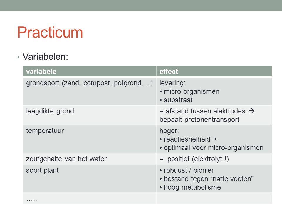 Practicum Variabelen: variabeleeffect grondsoort (zand, compost, potgrond,…)levering: micro-organismen substraat laagdikte grond= afstand tussen elekt