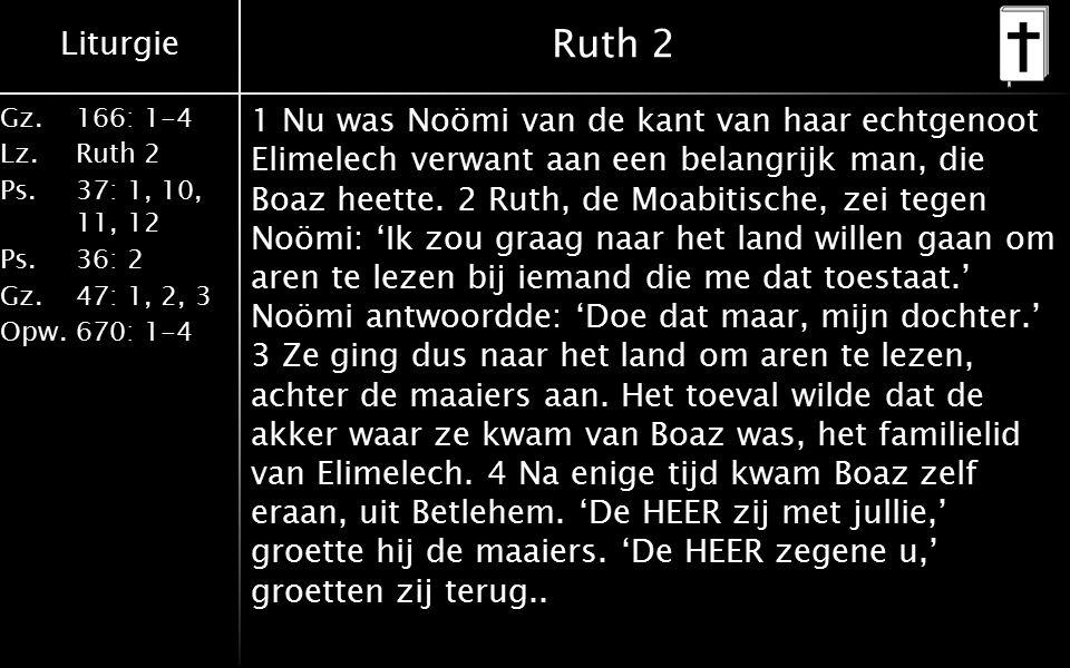 Liturgie Gz.166: 1-4 Lz.Ruth 2 Ps.37: 1, 10, 11, 12 Ps.36: 2 Gz.47: 1, 2, 3 Opw.670: 1-4 Ruth 2 5 Boaz vroeg de voorman van zijn maaiers: 'Bij wie hoort die jonge vrouw daar?' 6 De man antwoordde: 'Dat is de Moabitische vrouw die met Noömi is teruggekeerd.