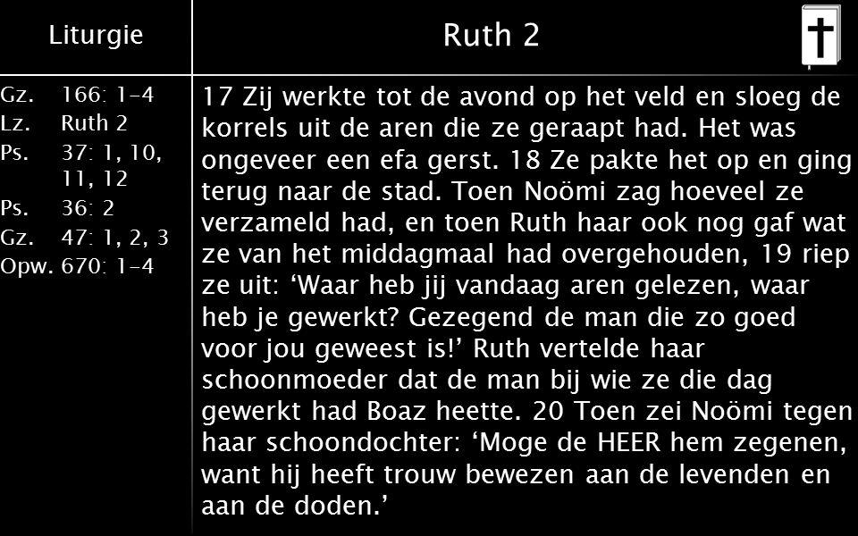 Liturgie Gz.166: 1-4 Lz.Ruth 2 Ps.37: 1, 10, 11, 12 Ps.36: 2 Gz.47: 1, 2, 3 Opw.670: 1-4 Ruth 2 En ze vervolgde: 'Hij is een naaste verwant van ons en kan daarom zijn rechten als losser laten gelden.' 21 En Ruth, de Moabitische, zei: 'Hij heeft ook nog tegen me gezegd dat ik bij zijn maaiers moest blijven totdat zijn hele oogst is binnengehaald.' 22 'Het is goed dat je optrekt met de vrouwen op zijn land, mijn dochter,' zei Noömi tegen Ruth, 'want dan zal niemand je op een ander veld lastig kunnen vallen.' 23 Ze bleef dus aren lezen bij de vrouwen die voor Boaz werkten, tot het einde van de gerste- en de tarweoogst.