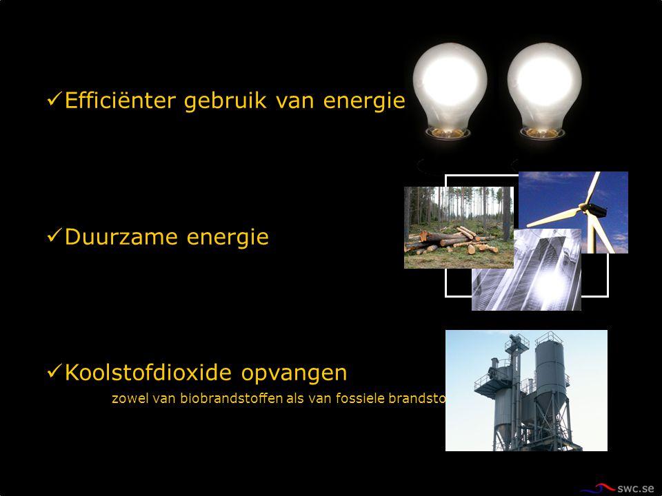 Efficiënter gebruik van energie Duurzame energie Koolstofdioxide opvangen zowel van biobrandstoffen als van fossiele brandstoffen
