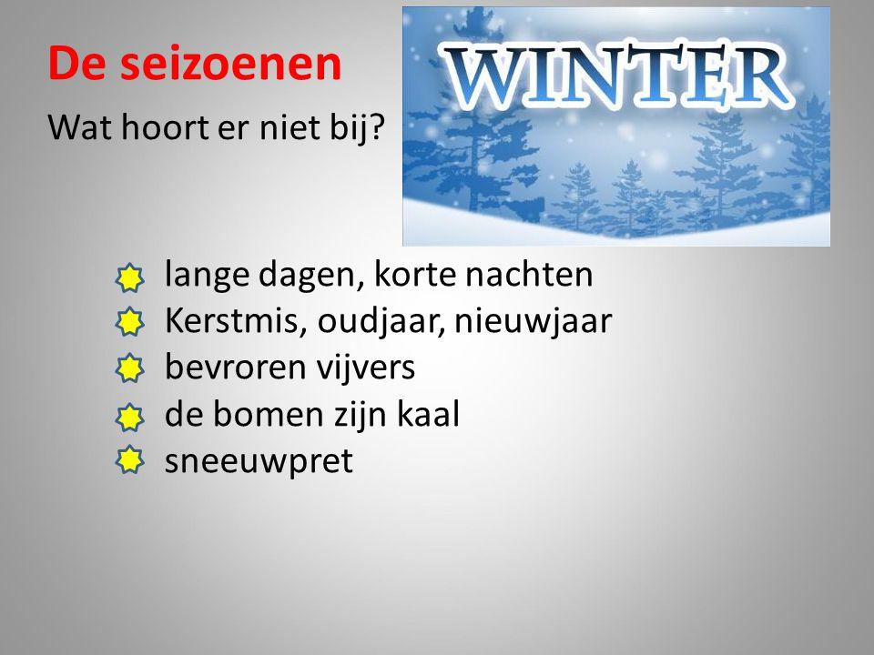 De seizoenen Wat hoort er niet bij? lange dagen, korte nachten Kerstmis, oudjaar, nieuwjaar bevroren vijvers de bomen zijn kaal sneeuwpret