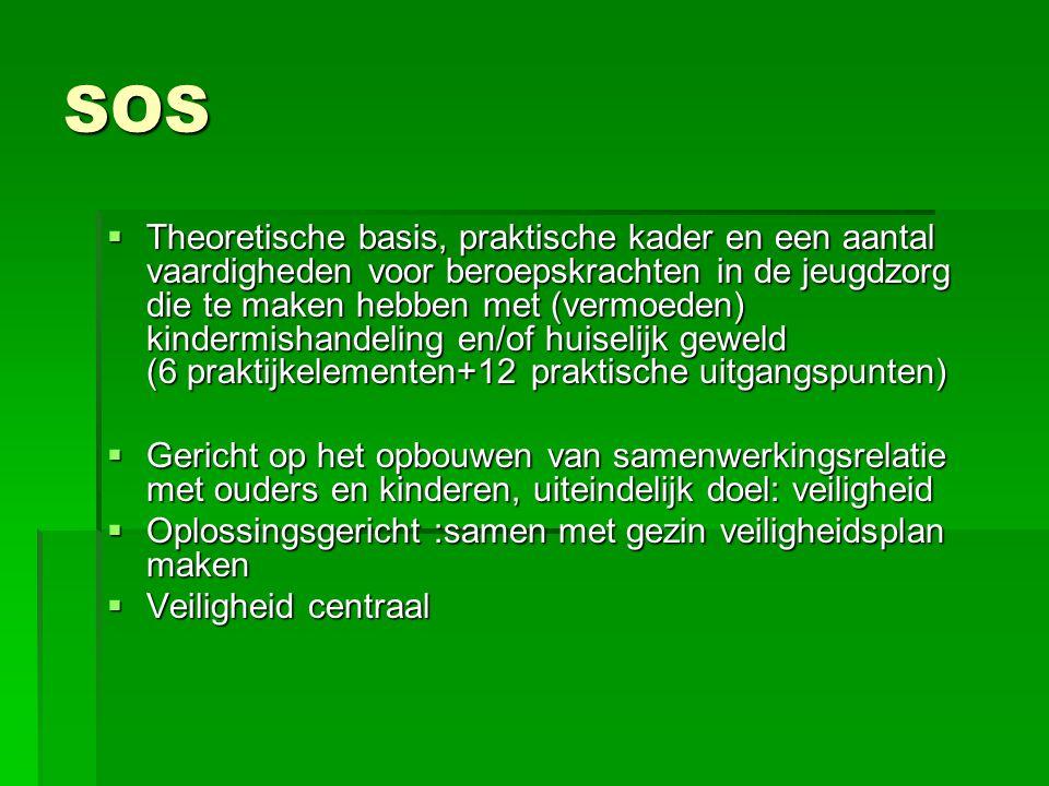 SOS  Theoretische basis, praktische kader en een aantal vaardigheden voor beroepskrachten in de jeugdzorg die te maken hebben met (vermoeden) kinderm