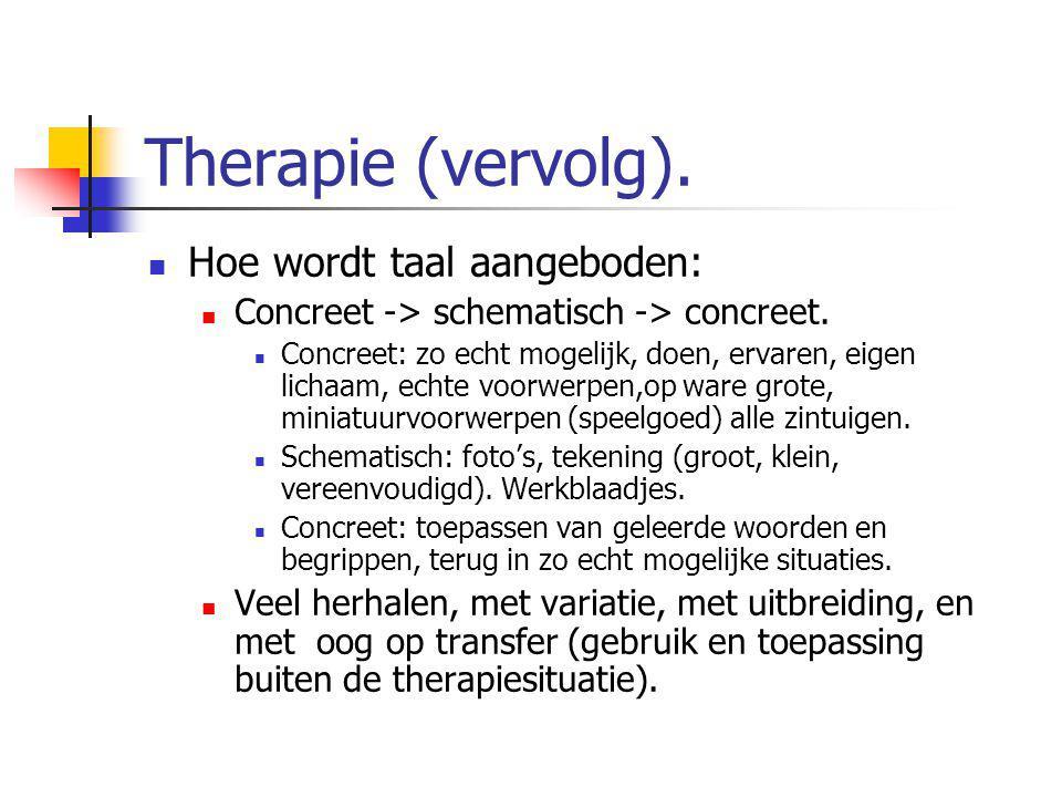 Therapie (vervolg). Hoe wordt taal aangeboden: Concreet -> schematisch -> concreet. Concreet: zo echt mogelijk, doen, ervaren, eigen lichaam, echte vo