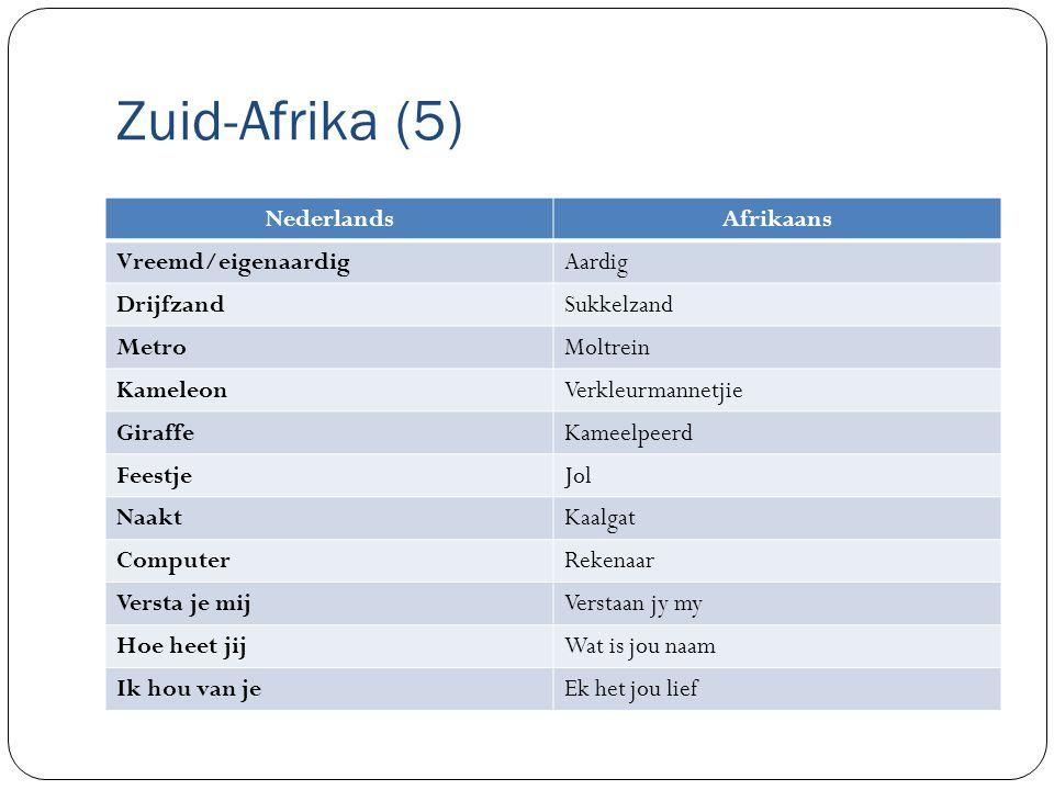 Zuid-Afrika (5) NederlandsAfrikaans Vreemd/eigenaardigAardig DrijfzandSukkelzand MetroMoltrein KameleonVerkleurmannetjie GiraffeKameelpeerd FeestjeJol NaaktKaalgat ComputerRekenaar Versta je mijVerstaan jy my Hoe heet jijWat is jou naam Ik hou van jeEk het jou lief
