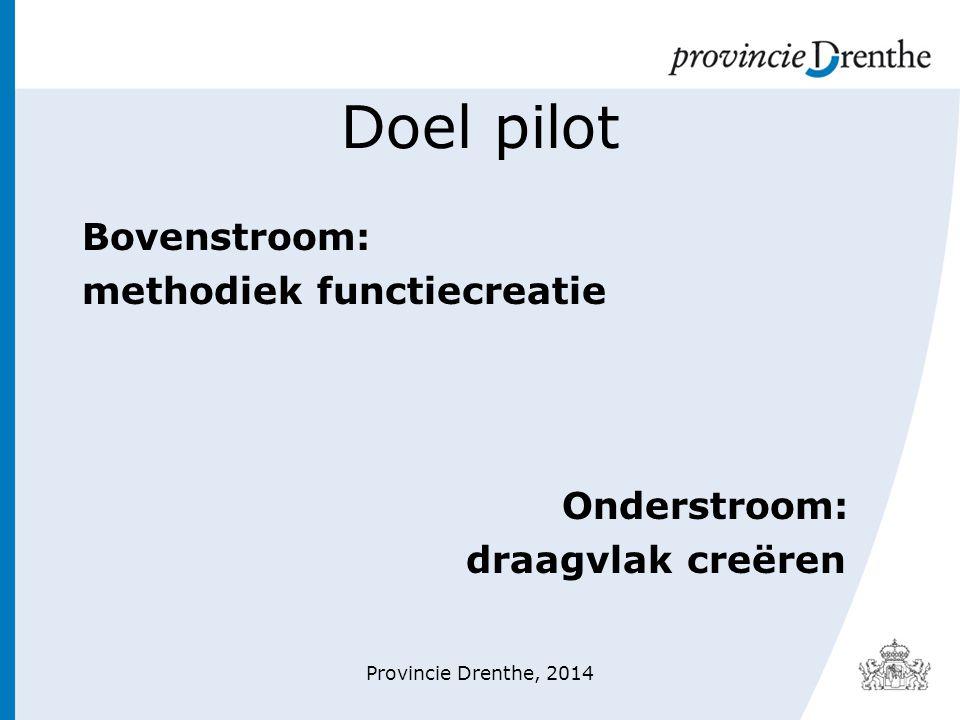 Doel pilot Bovenstroom: methodiek functiecreatie Onderstroom: draagvlak creëren Provincie Drenthe, 2014