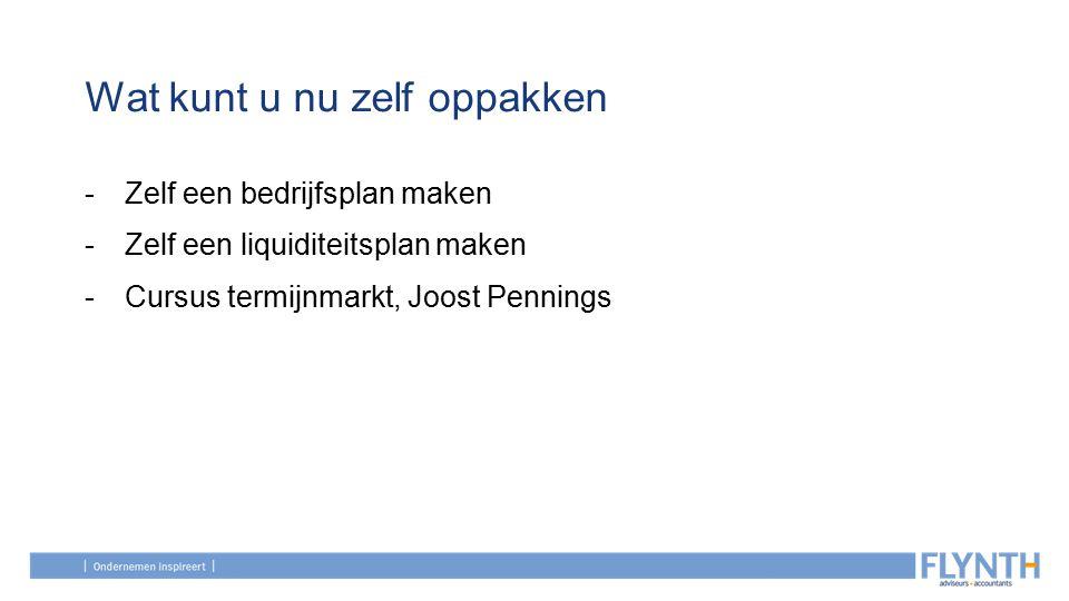 Wat kunt u nu zelf oppakken -Zelf een bedrijfsplan maken -Zelf een liquiditeitsplan maken -Cursus termijnmarkt, Joost Pennings