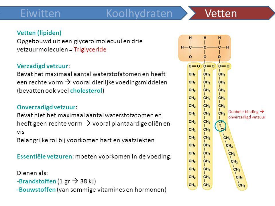 Vetten (lipiden) Opgebouwd uit een glycerolmolecuul en drie vetzuurmoleculen = Triglyceride Verzadigd vetzuur: Bevat het maximaal aantal waterstofatom
