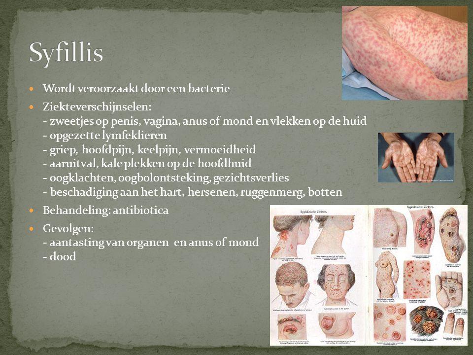 Wordt veroorzaakt door een bacterie Ziekteverschijnselen: - zweetjes op penis, vagina, anus of mond en vlekken op de huid - opgezette lymfeklieren - g