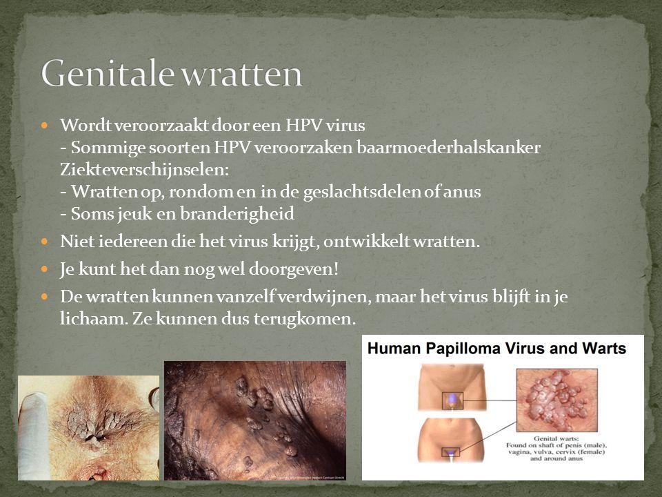 Wordt veroorzaakt door een HPV virus - Sommige soorten HPV veroorzaken baarmoederhalskanker Ziekteverschijnselen: - Wratten op, rondom en in de geslac