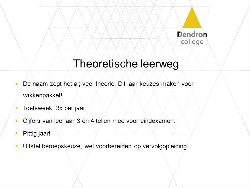 Theoretische leerweg  De naam zegt het al; veel theorie.