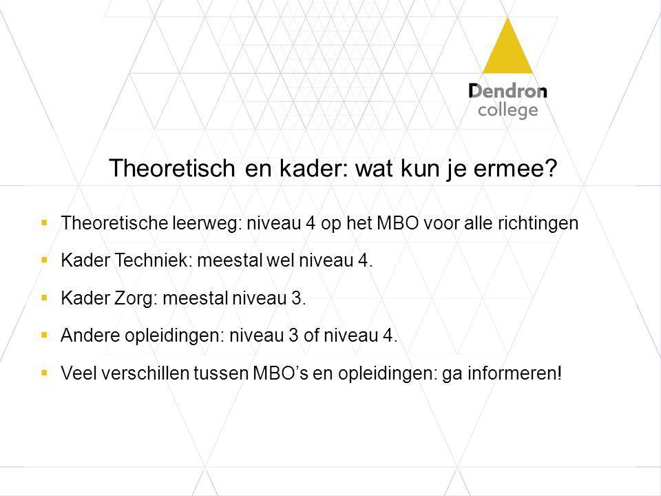 Theoretisch en kader: wat kun je ermee?  Theoretische leerweg: niveau 4 op het MBO voor alle richtingen  Kader Techniek: meestal wel niveau 4.  Kad