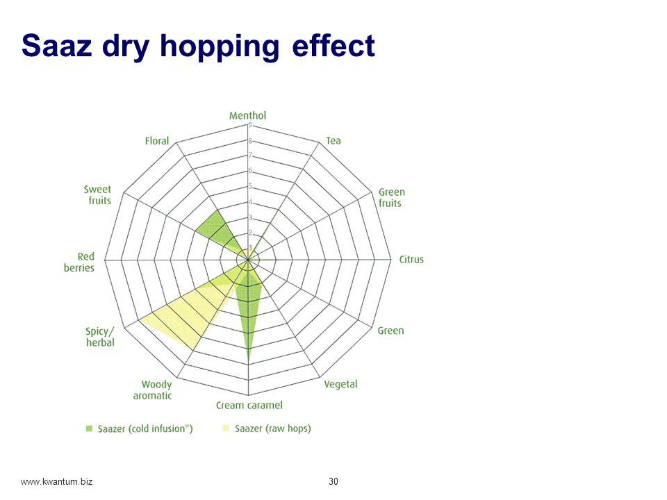 Saaz dry hopping effect www.kwantum.biz 30