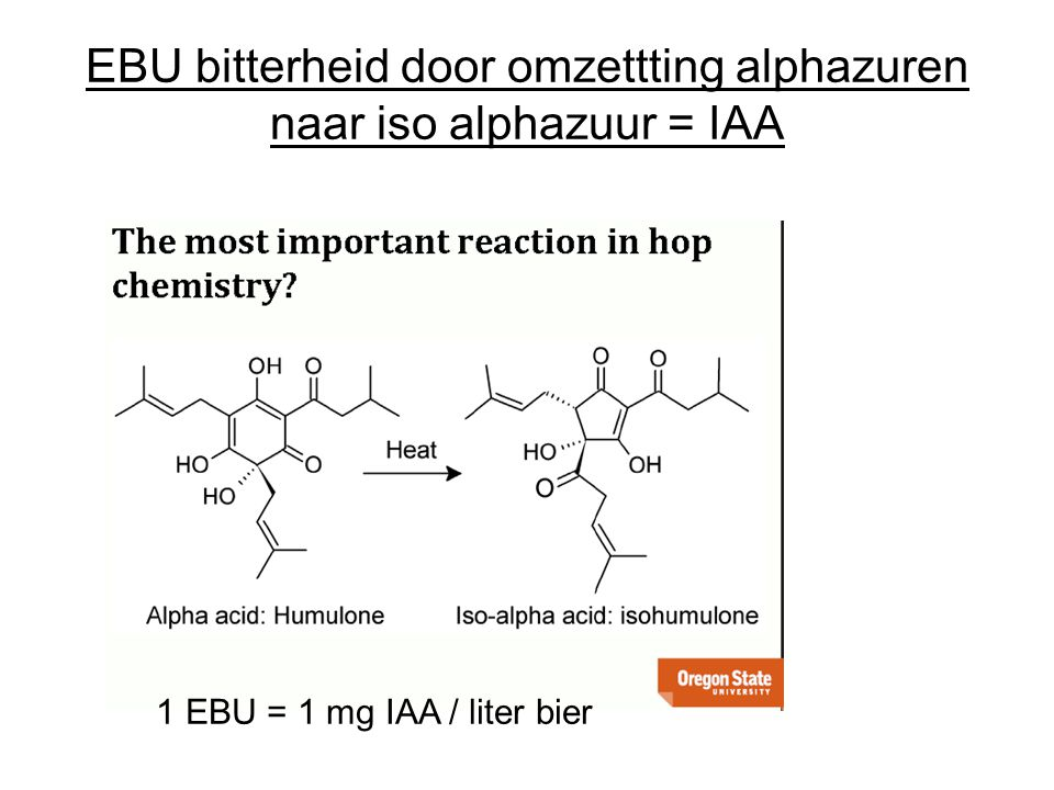 EBU bitterheid door omzettting alphazuren naar iso alphazuur = IAA 1 EBU = 1 mg IAA / liter bier