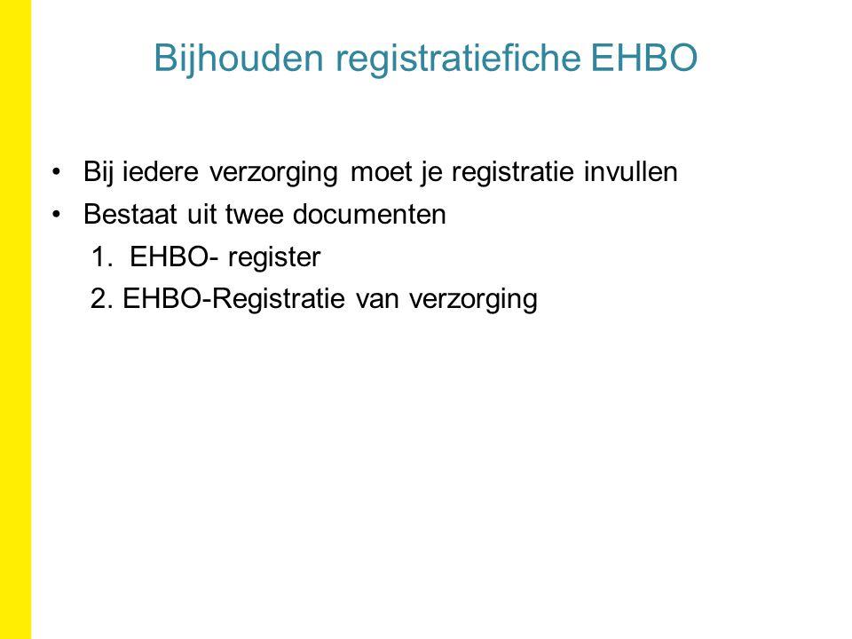 Bij iedere verzorging moet je registratie invullen Bestaat uit twee documenten 1.