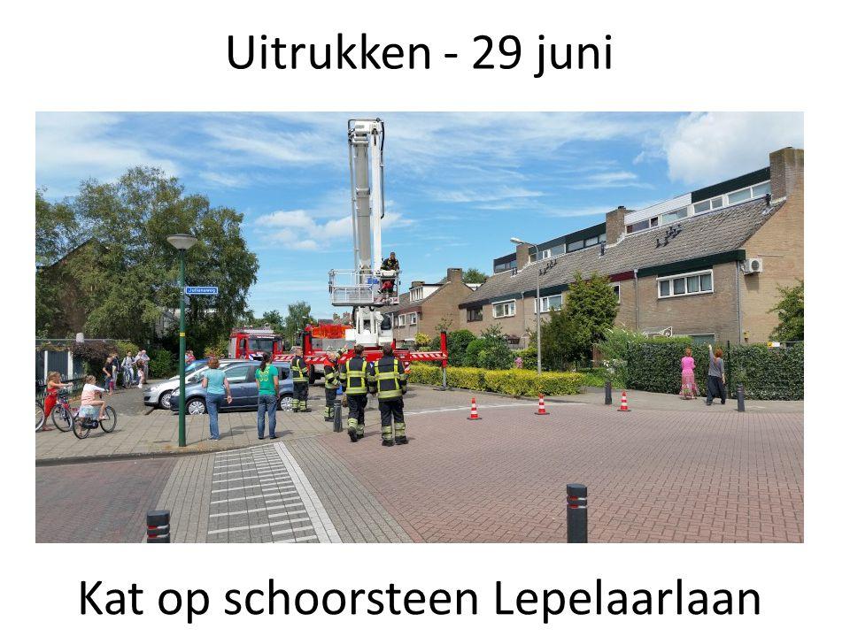 Uitrukken - 29 juni Kat op schoorsteen Lepelaarlaan