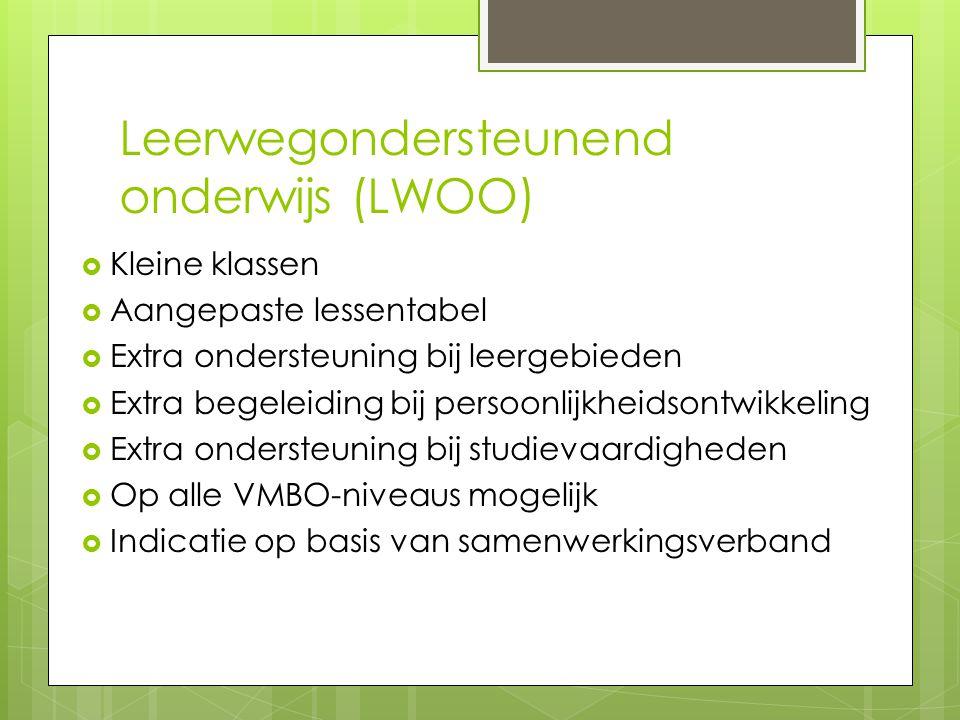 Leerwegondersteunend onderwijs (LWOO)  Kleine klassen  Aangepaste lessentabel  Extra ondersteuning bij leergebieden  Extra begeleiding bij persoon