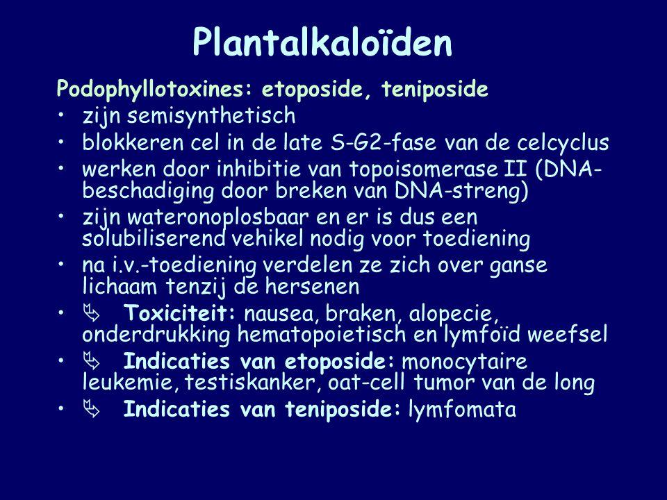 Plantalkaloïden Podophyllotoxines: etoposide, teniposide zijn semisynthetisch blokkeren cel in de late S-G2-fase van de celcyclus werken door inhibiti