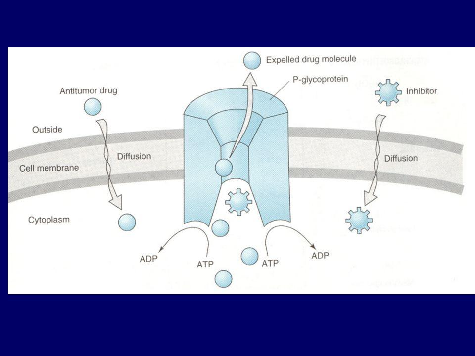 Volledige genezing vraagt vermoedelijk volledige uitroeiing van tumorcellen.