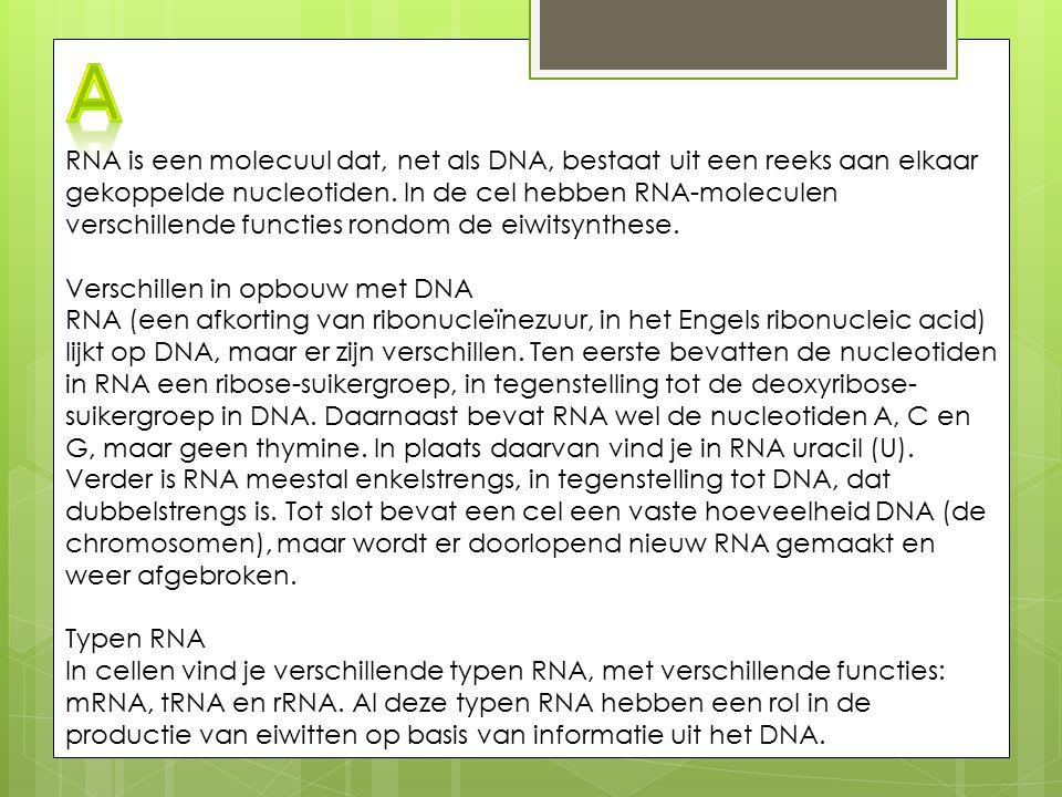 RNA is een molecuul dat, net als DNA, bestaat uit een reeks aan elkaar gekoppelde nucleotiden. In de cel hebben RNA-moleculen verschillende functies r