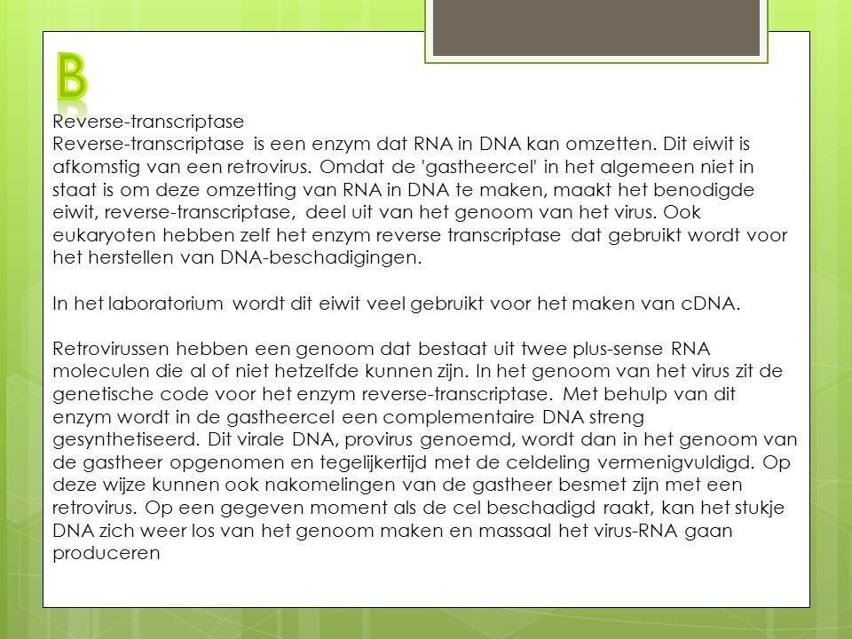 Reverse-transcriptase Reverse-transcriptase is een enzym dat RNA in DNA kan omzetten. Dit eiwit is afkomstig van een retrovirus. Omdat de 'gastheercel