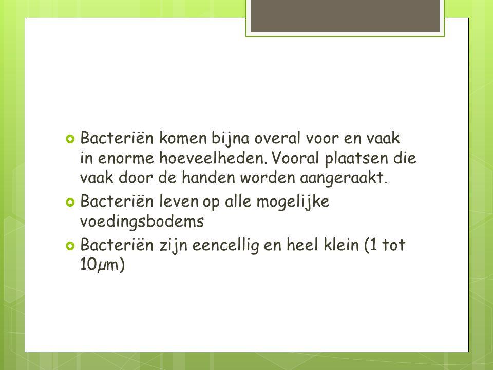  Bacteriën komen bijna overal voor en vaak in enorme hoeveelheden.