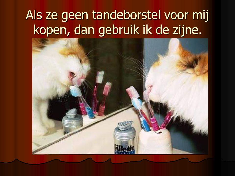 Als ze geen tandeborstel voor mij kopen, dan gebruik ik de zijne.
