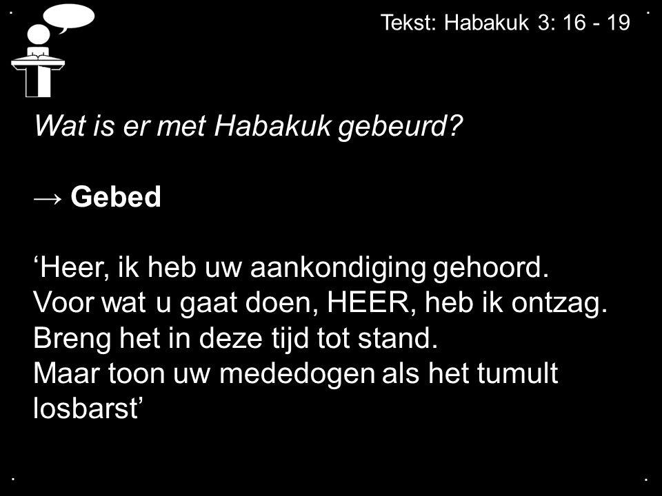 .... Tekst: Habakuk 3: 16 - 19 Wat is er met Habakuk gebeurd? → Gebed 'Heer, ik heb uw aankondiging gehoord. Voor wat u gaat doen, HEER, heb ik ontzag