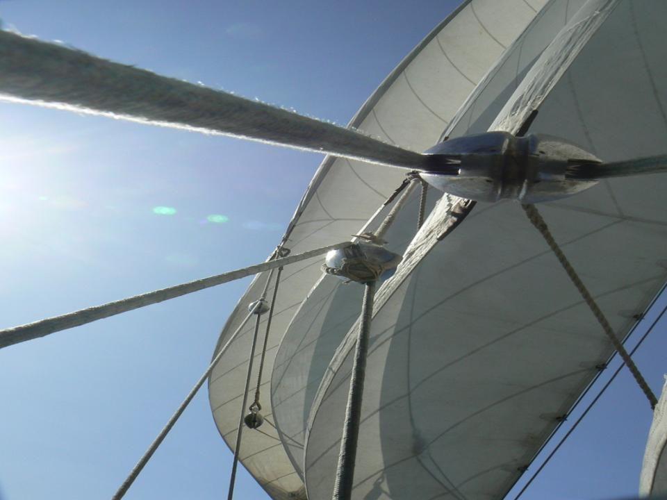 Op maandag is het Sail-out dus zijn we er weer bij.