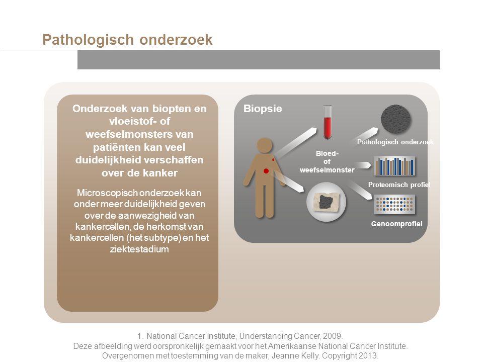 Pathologisch onderzoek 1. National Cancer Institute, Understanding Cancer, 2009. Deze afbeelding werd oorspronkelijk gemaakt voor het Amerikaanse Nati