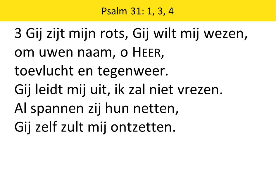 Psalm 31: 1, 3, 4 3 Gij zijt mijn rots, Gij wilt mij wezen, om uwen naam, o H EER, toevlucht en tegenweer. Gij leidt mij uit, ik zal niet vrezen. Al s