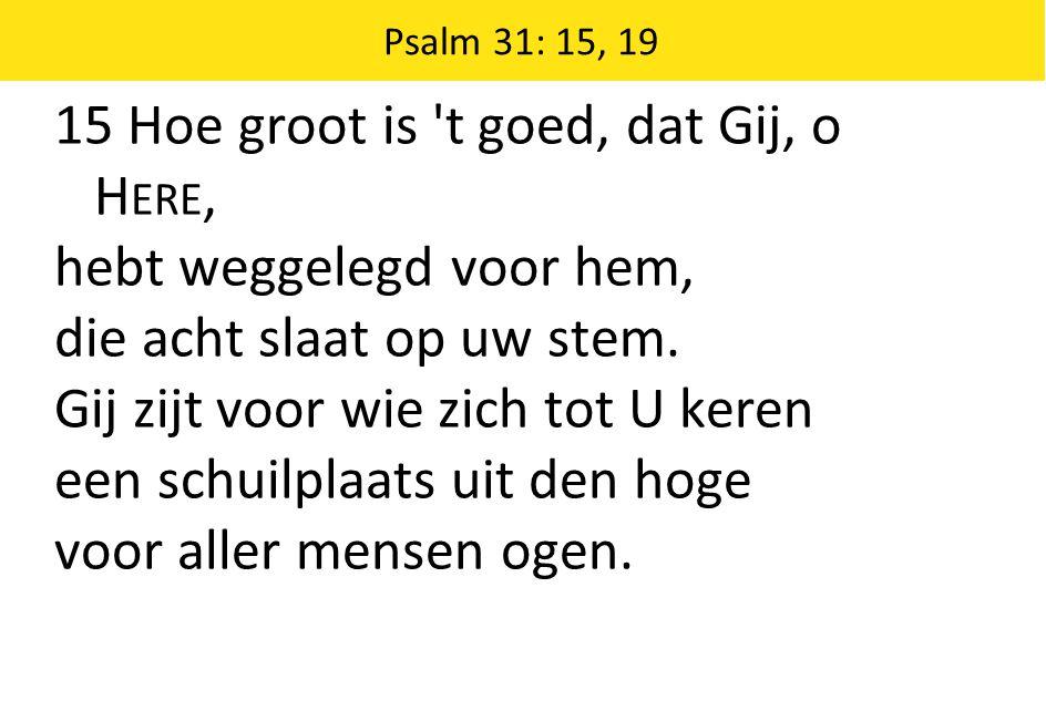 Psalm 31: 15, 19 15 Hoe groot is 't goed, dat Gij, o H ERE, hebt weggelegd voor hem, die acht slaat op uw stem. Gij zijt voor wie zich tot U keren een