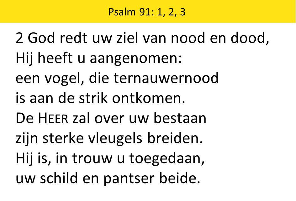 2 God redt uw ziel van nood en dood, Hij heeft u aangenomen: een vogel, die ternauwernood is aan de strik ontkomen. De H EER zal over uw bestaan zijn