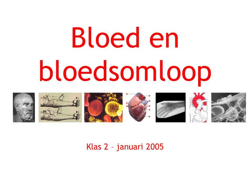 Bloed en bloedsomloop Klas 2 – januari 2005
