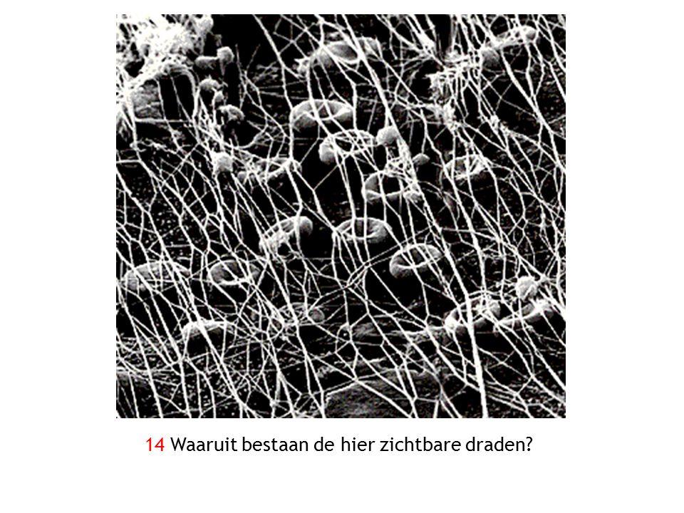 14 Waaruit bestaan de hier zichtbare draden?