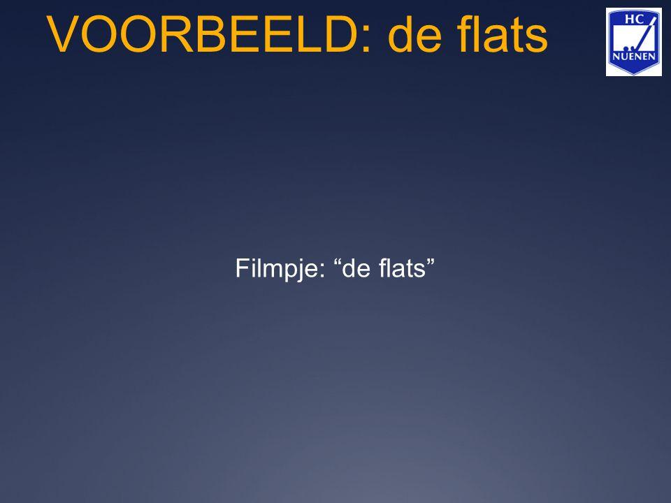 """VOORBEELD: de flats Filmpje: """"de flats"""""""
