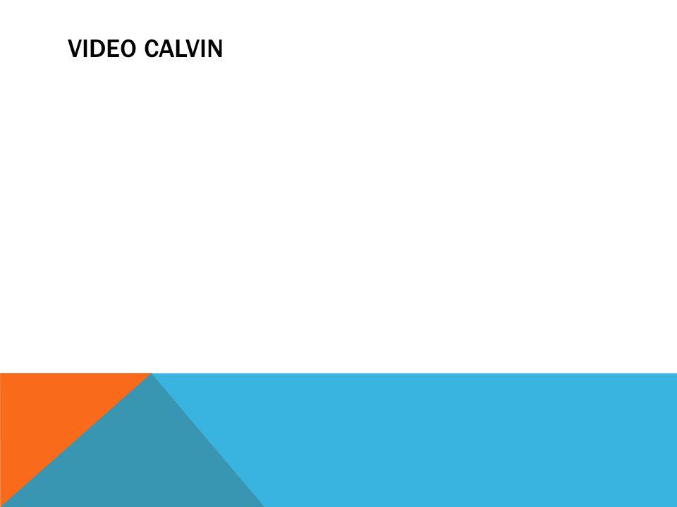 VIDEO CALVIN
