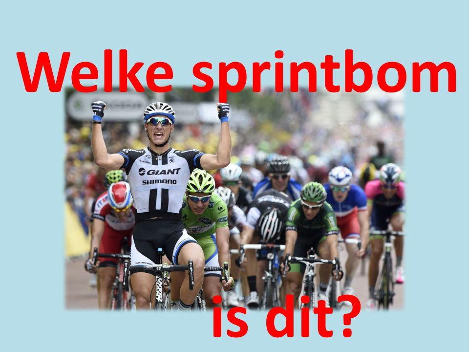 Welke sprintbom is dit?