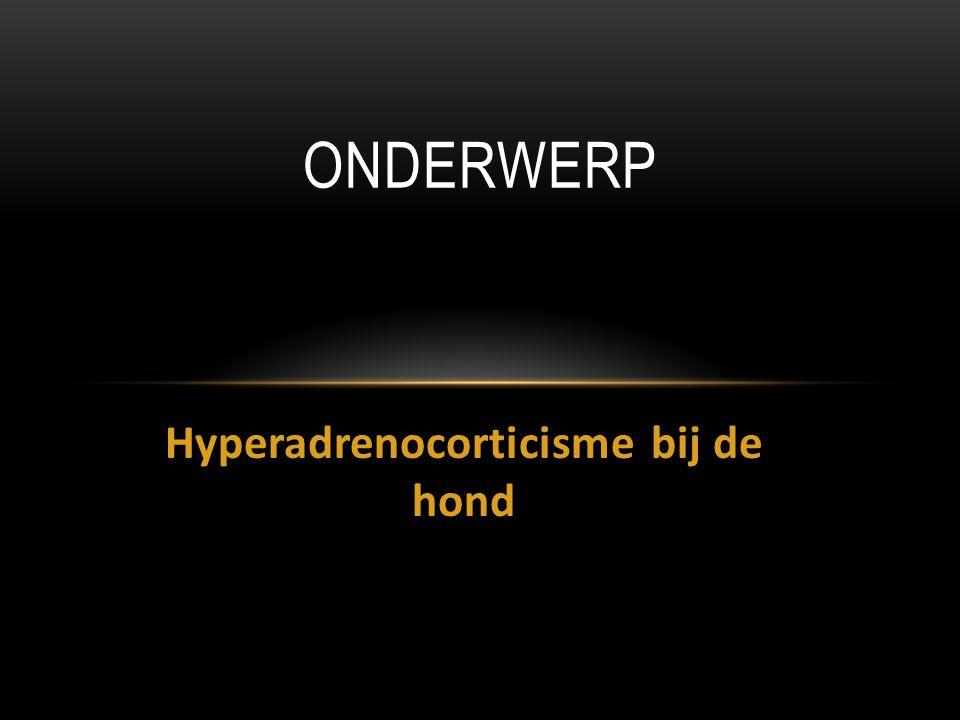 Hyperadrenocorticisme bij de hond ONDERWERP