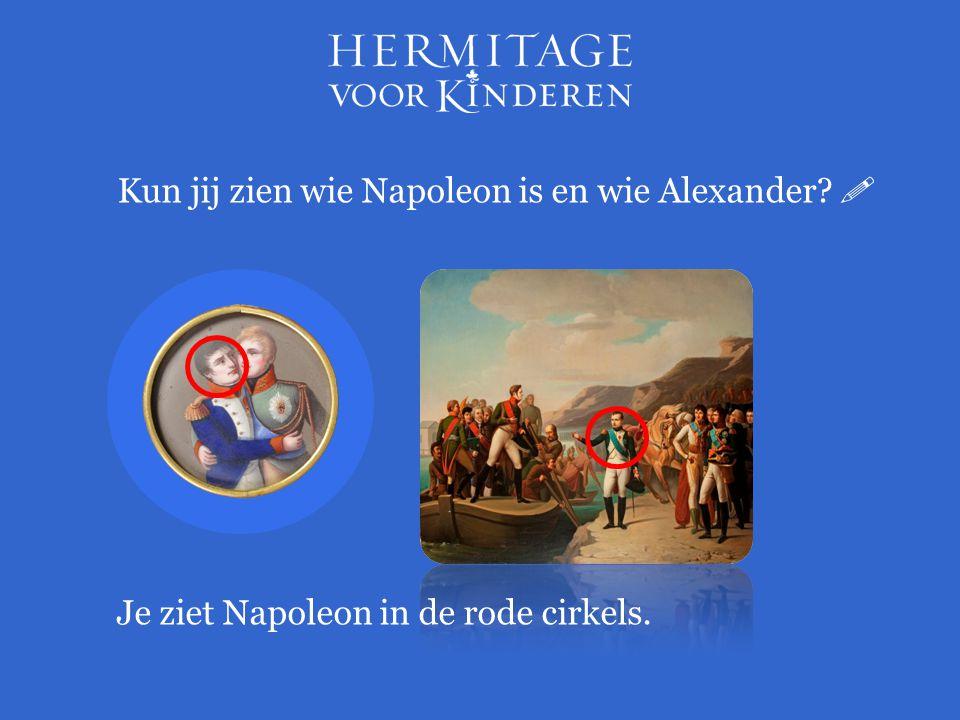 Kun jij zien wie Napoleon is en wie Alexander?  Je ziet Napoleon in de rode cirkels.