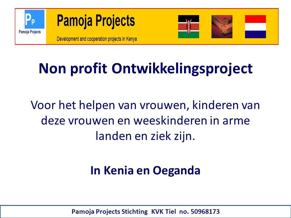 Non profit Ontwikkelingsproject Voor het helpen van vrouwen, kinderen van deze vrouwen en weeskinderen in arme landen en ziek zijn.