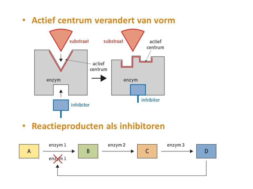 Actief centrum verandert van vorm Reactieproducten als inhibitoren