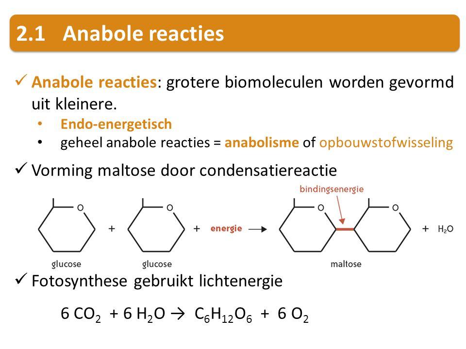 2.1Anabole reacties Anabole reacties: grotere biomoleculen worden gevormd uit kleinere. Endo-energetisch geheel anabole reacties = anabolisme of opbou